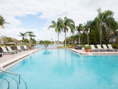 The community pool at Fairways at Feather Sound in Clearwater, FL