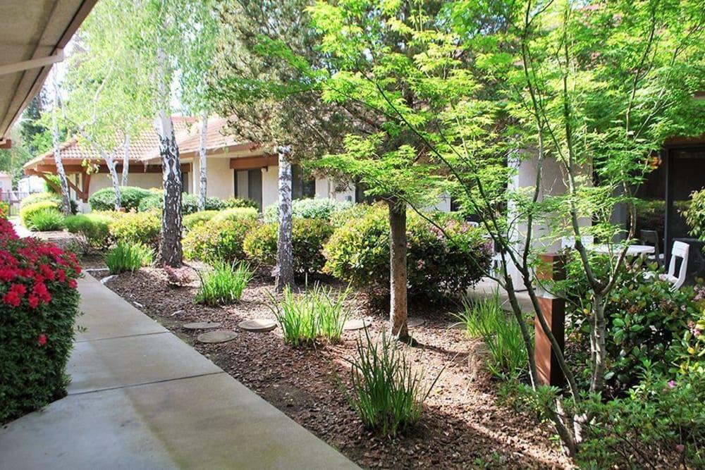 Walkway through Roseville Commons Senior Living in Roseville, California