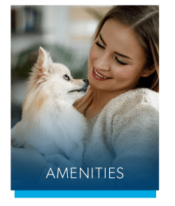 Amenities at Brookdale at Mark Center Apartment Homes