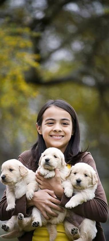 Child with armful of puppies at Parkview Animal Hospital in Warren, MI