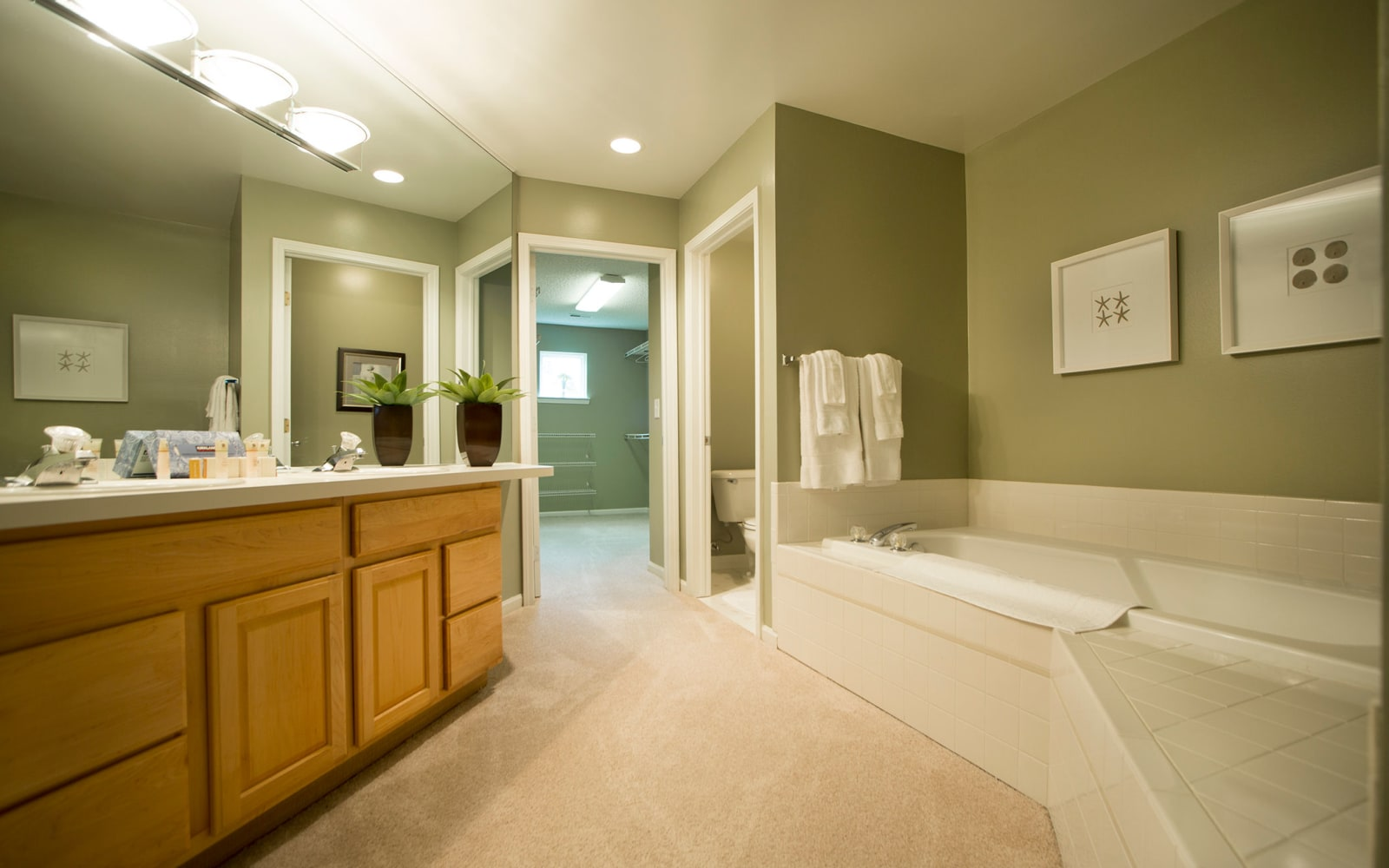 Bathroom at Aldingbrooke in West Bloomfield, Michigan