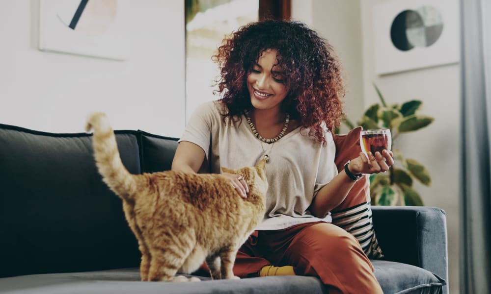 Resident petting her cat and enjoying a glass of wine at Bridle Path Apartments in Bethlehem, Pennsylvania