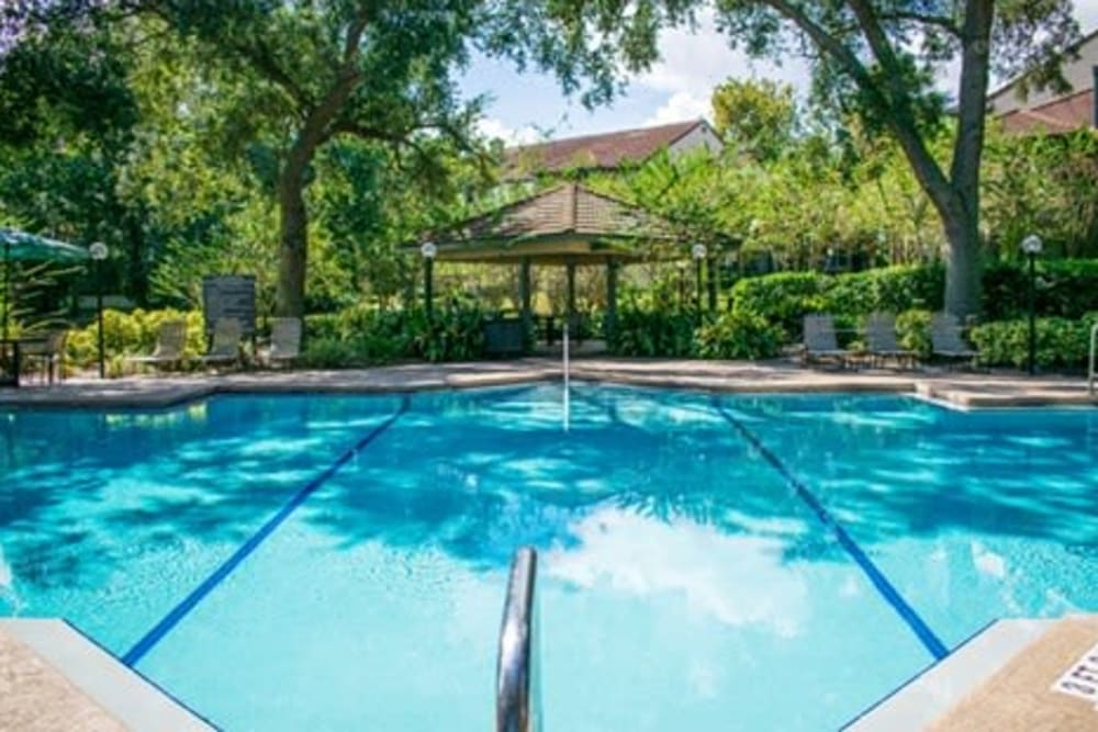 Swimming pool at 1801 MetroWest in Orlando, Florida