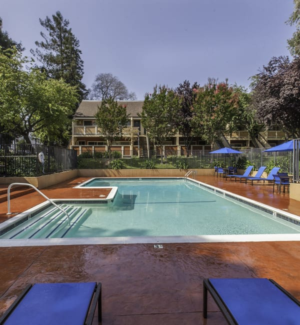Swimming Pool at The Timbers Apartments in Hayward
