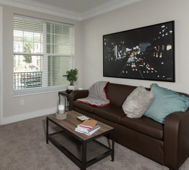Off Campus Student Housing by Florida State University in
