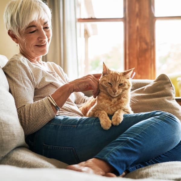 A woman with her cat at The Crest at Citrus Heights in Citrus Heights, California
