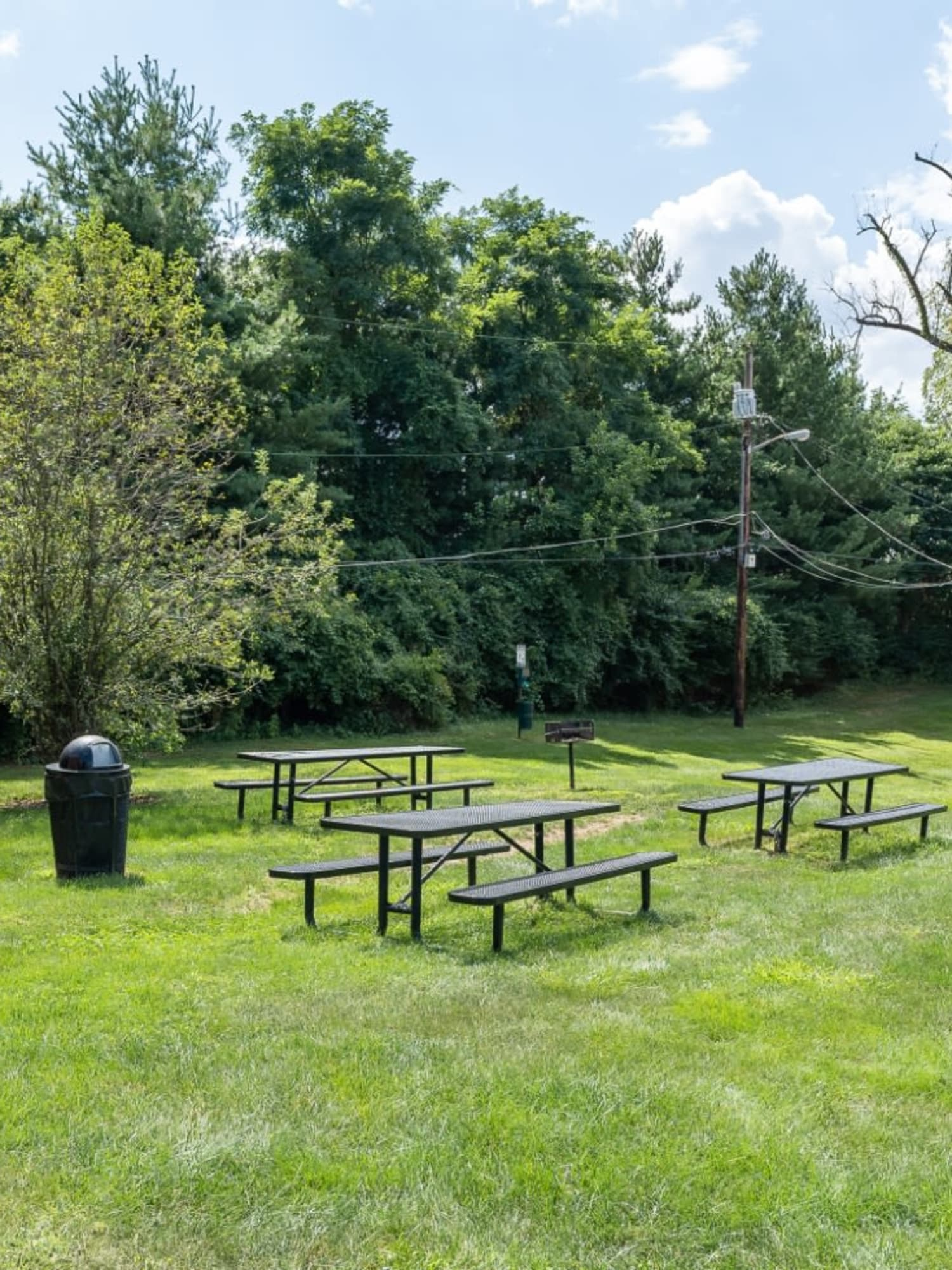Picnic tables on a lush green grass lawn at Centennial Woods Apartments in Cincinnati, Ohio