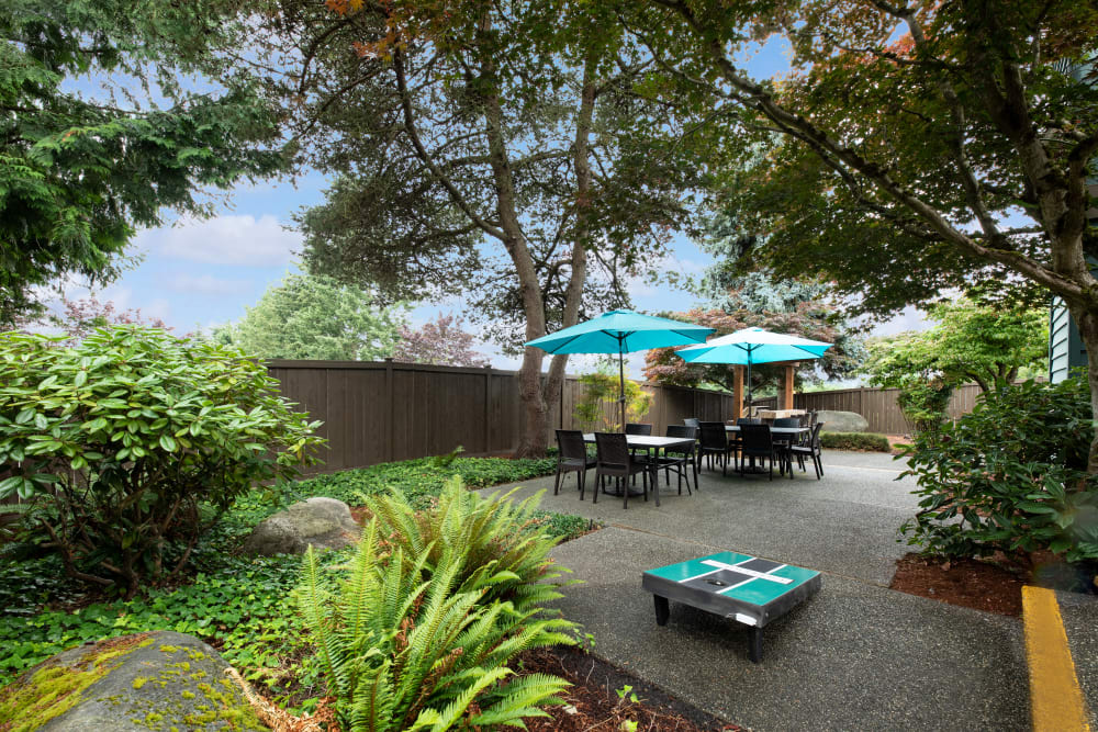 Common area courtyard at Latitude Apartments in Everett, Washington