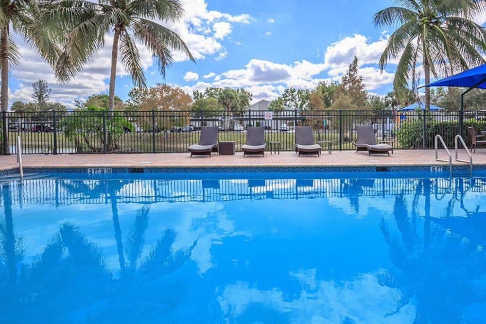 Sunny Recreation Area At The Coast of Naples Florida