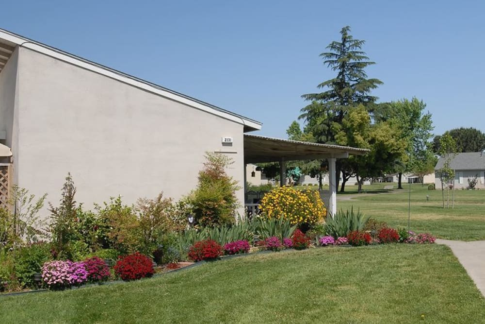 Open Yards at the Senior Living Community in Atwater