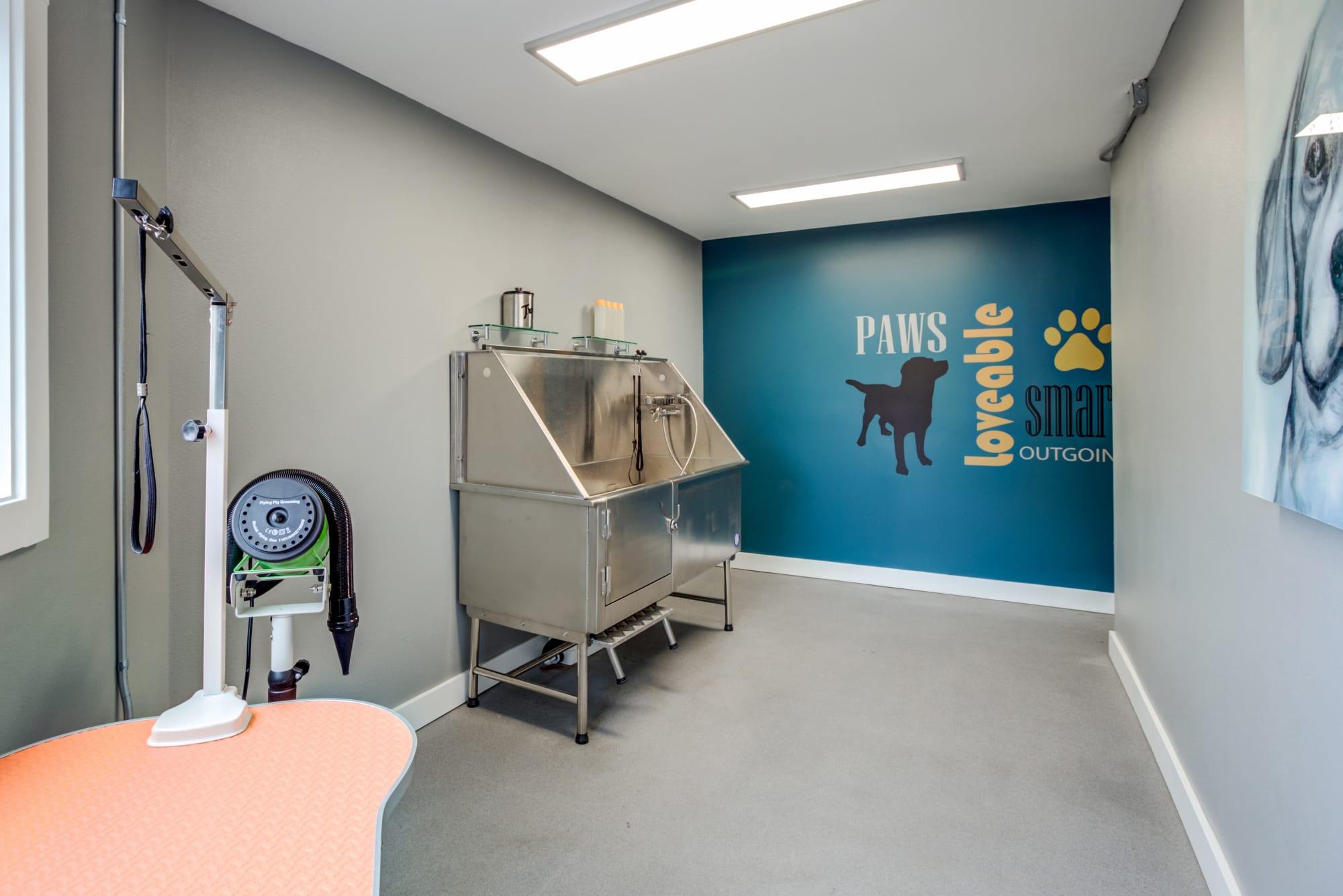 The dog wash station takes care of muddy paws at Elan 41 Apartments in Seattle, Washington