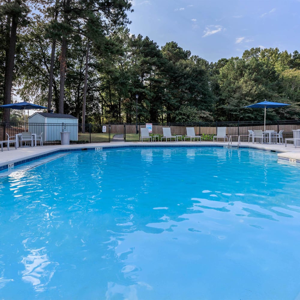 Resort-style swimming pool surrounded by mature trees at The Bentley at Marietta in Marietta, Georgia