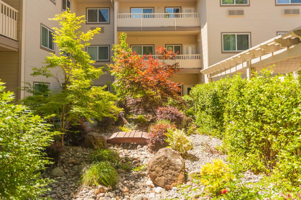 Exterior garden at River Commons Senior Living in Redding, California
