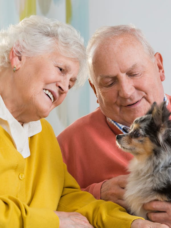 Residents enjoying the company of their dog at Maplebrook Senior Living in Farmington, Missouri