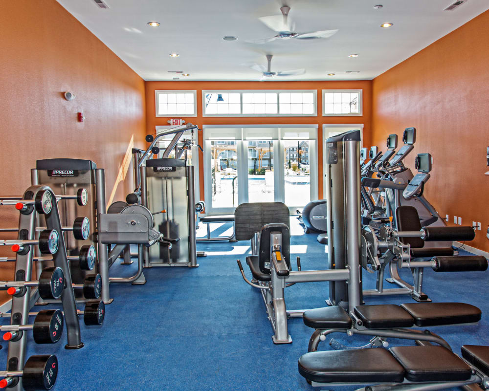 Fitness center at Arbor Brook in Murfreesboro, Tennessee