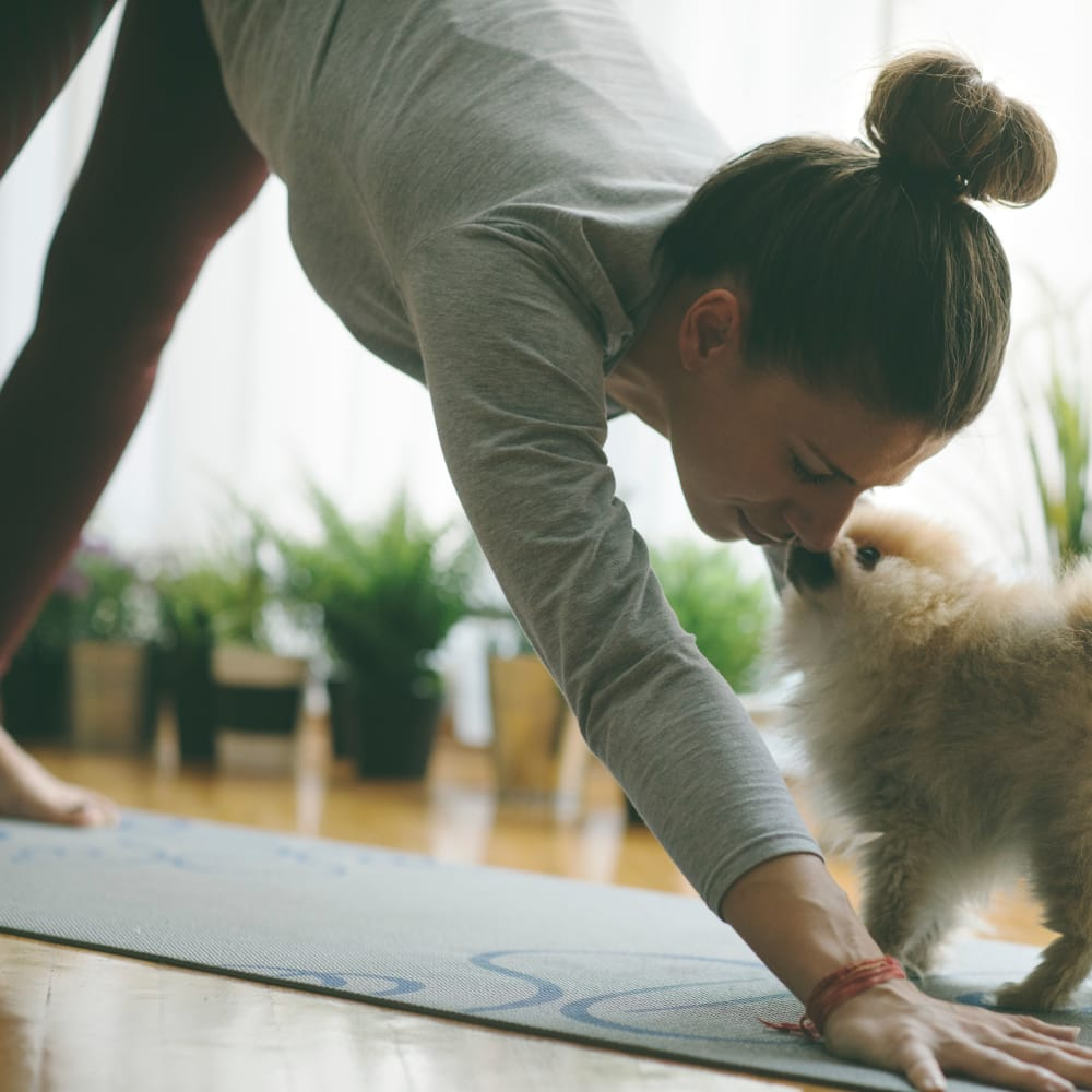 Resident practicing yoga with dog at 11 Cooper in Camden, New Jersey
