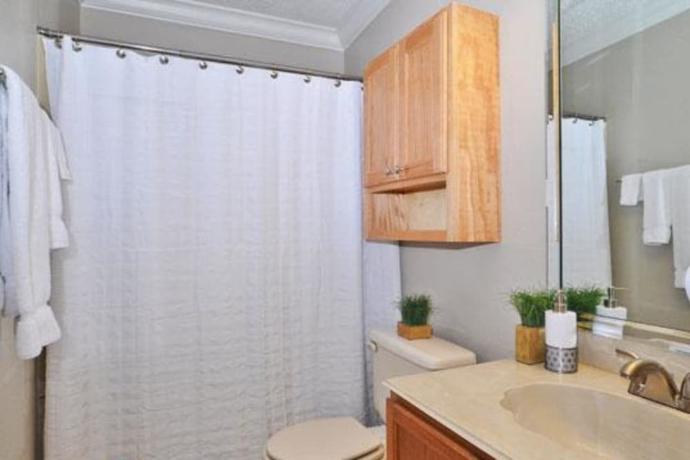 Beautiful bathroom at French Colony Apartments in Lafayette, Louisiana