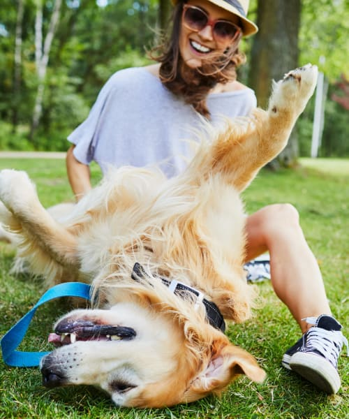 Happy resident playing with dog at Shadow Ridge Apartment Homes in Simi Valley, California