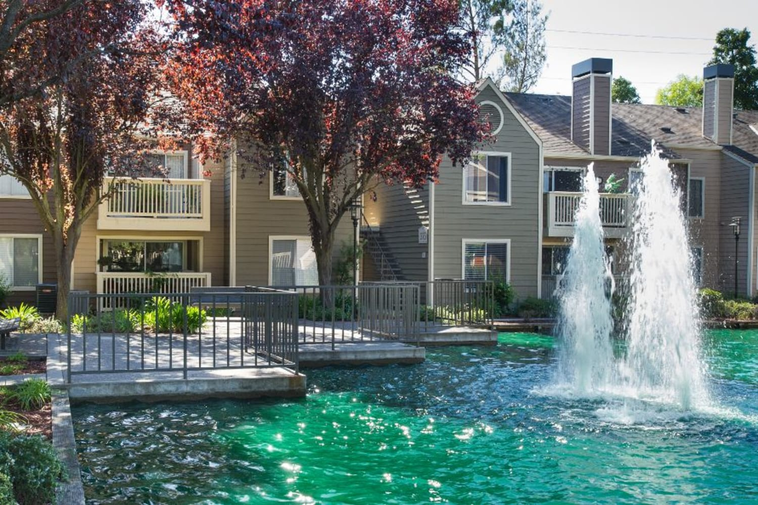 Enjoy walks around the beautiful grounds at Bridges at San Ramon in San Ramon, California