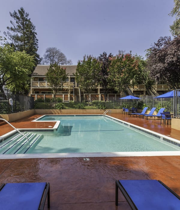 Swimming Pool with lounge chairs and umbrellas at The Timbers Apartments in Hayward
