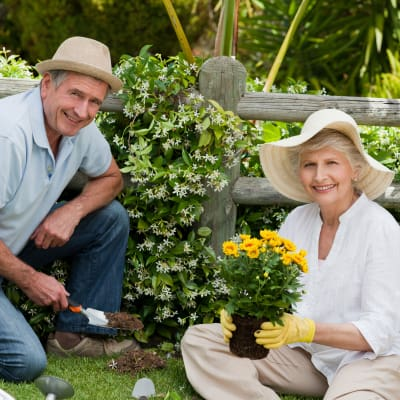 Senior couple gardening at Stonecrest of Meridian Hills