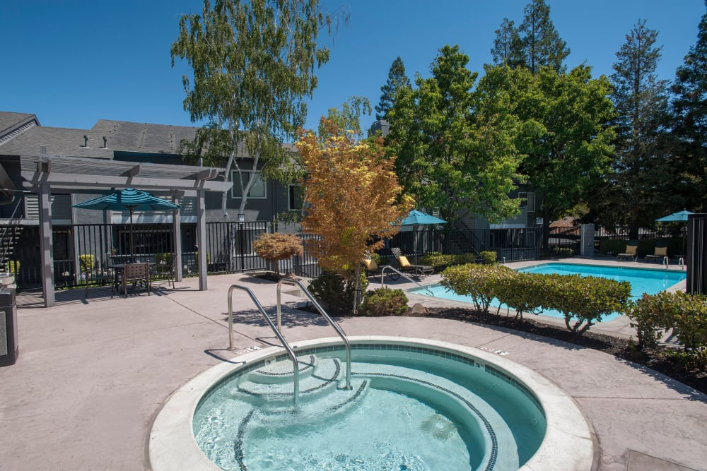 Resort-style spa and swimming pool at Plum Tree Apartment Homes in Martinez, California