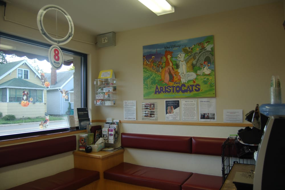 Lobby at Kenmore Animal Hospital in Kenmore, New York