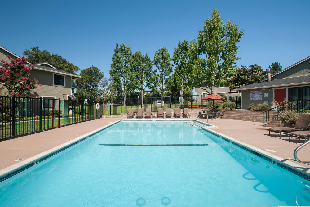 Sparking swimming pool on a sunny day at Ridgecrest Apartment Homes in Martinez, California