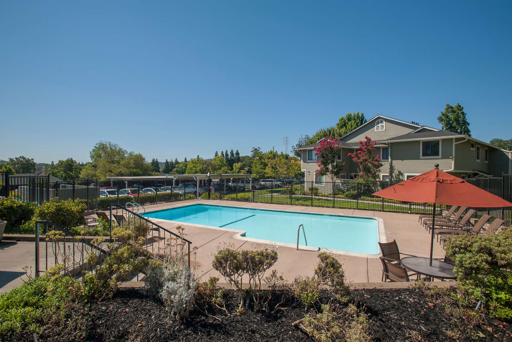 Aerial view of the swimming pool at Ridgecrest Apartment Homes in Martinez, California