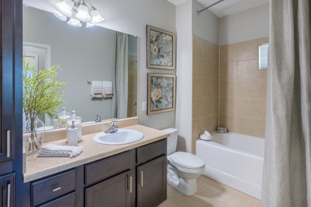Model bathroom with large vanity mirror and oval tub at The Vive in Kannapolis, North Carolina