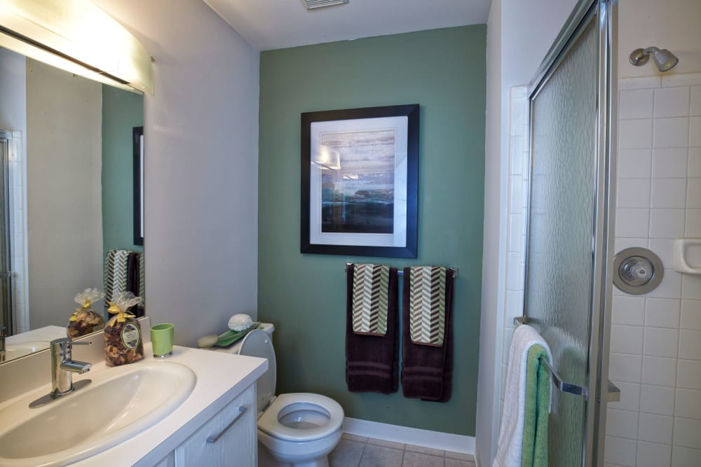 Bathroom layout at Lakeside Terraces in Sterling Heights, Michigan