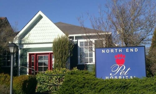 The entrance at North End Pet Hospital