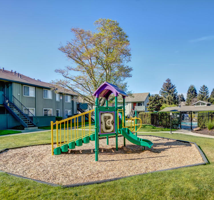 Onsite children's playground on a gorgeous day at Vue Fremont in Fremont, California