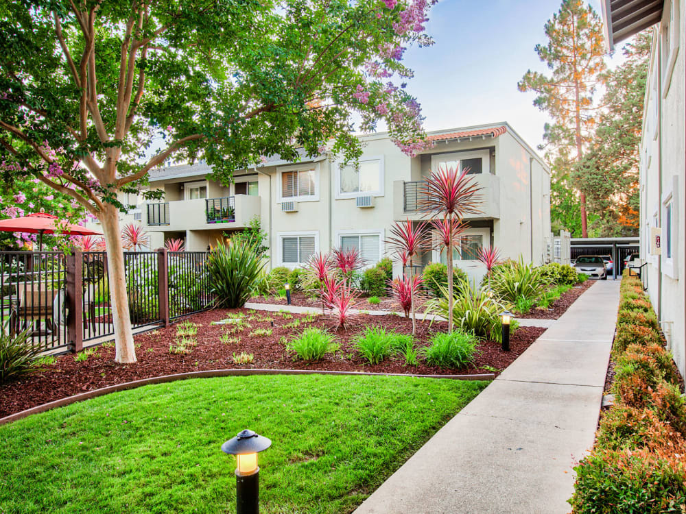 Beautifully maintained landscaping throughout the community at Pleasanton Place Apartment Homes in Pleasanton, California