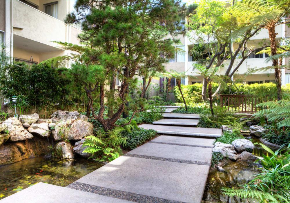 Koi pond at Sunset Barrington Gardens in Los Angeles, California