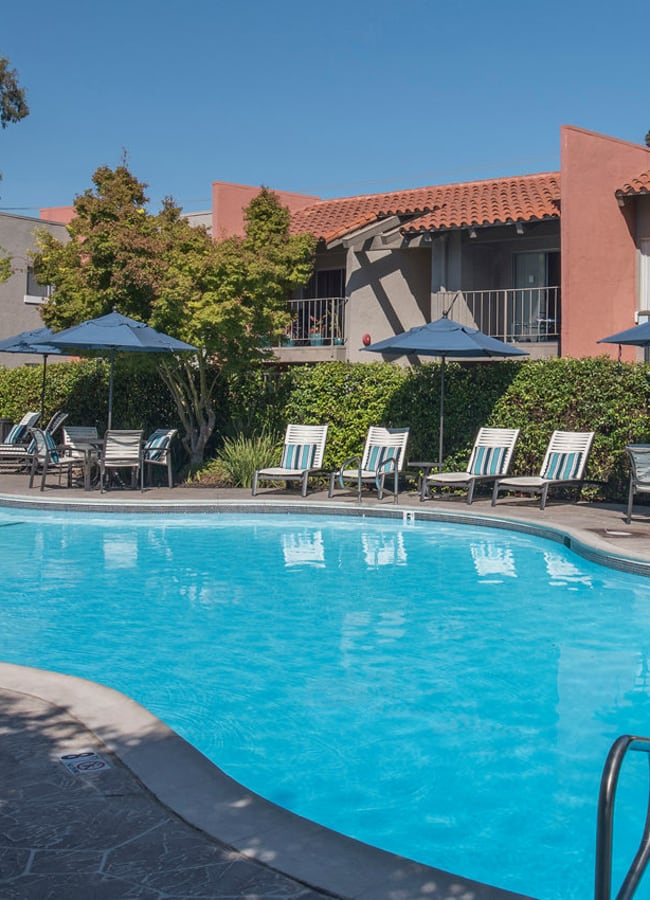 Poolside lounge chairs shaded by an umbrella at La Valencia Apartment Homes in Campbell, California