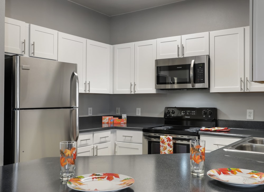 Sleek modern appliances in an apartment kitchen at Hawthorne Hill Apartments in Thornton, Colorado