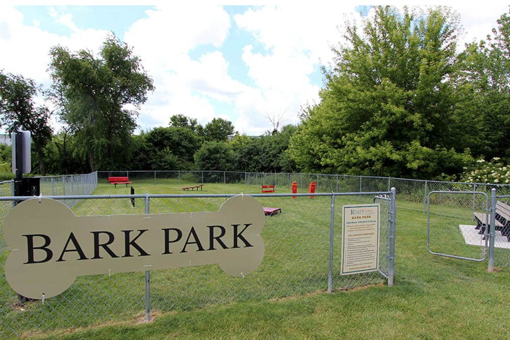 Have fun with your furry friend in the dog park at Riverstone Apartments in Bolingbrook, Illinois