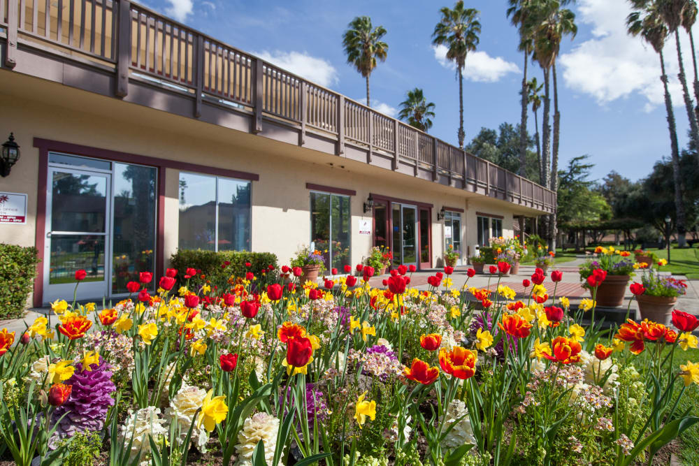 Beautiful landscaping at Valley West Apartments in San Jose, California