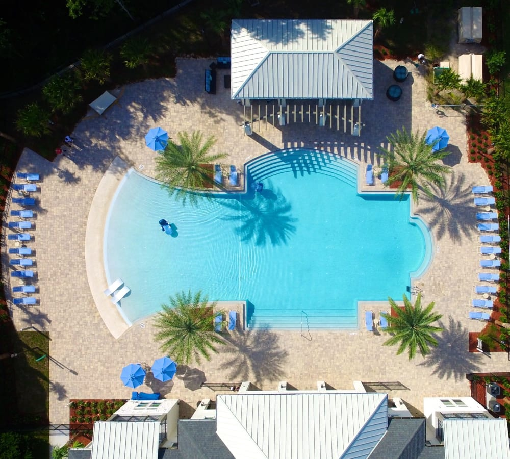 Aerial view of the swimming pool area at Alaqua in Jacksonville, Florida