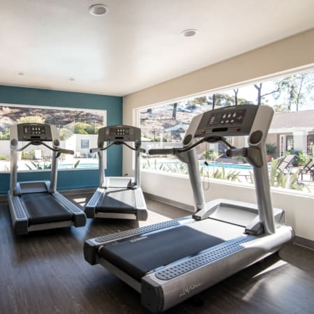 View amenities offered at Lakeview Village Apartments in Spring Valley, California