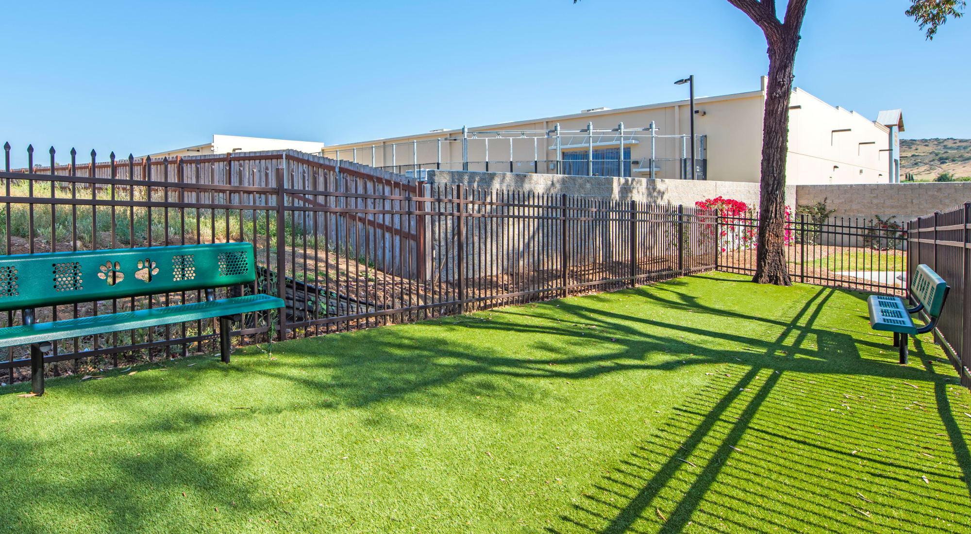 Pet-friendly apartments at Sofi Poway in Poway, California