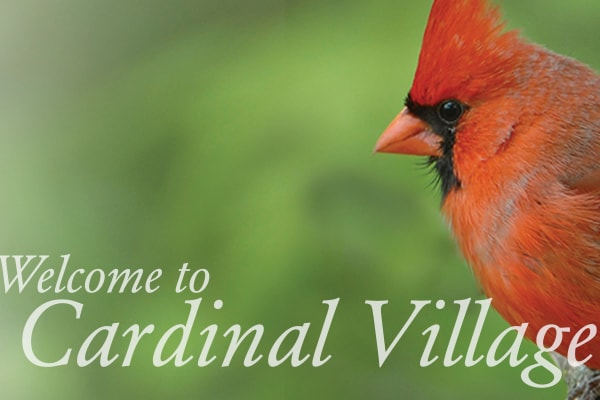 Cardinal Village in Sewell, New Jersey branding material