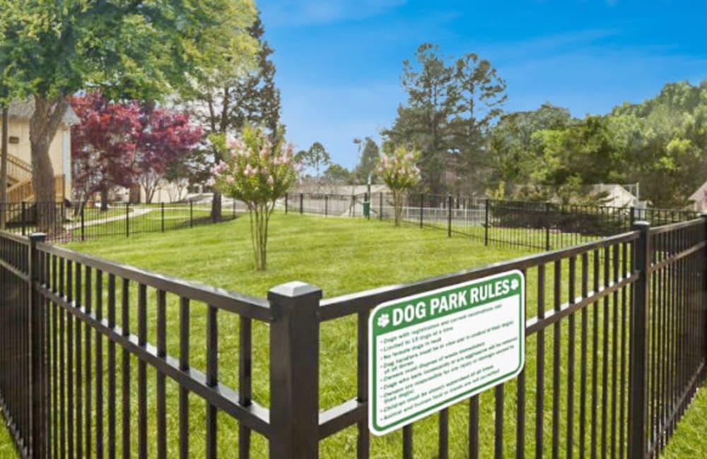 Onsite dog park at The Flats at Arrowood in Charlotte, North Carolina