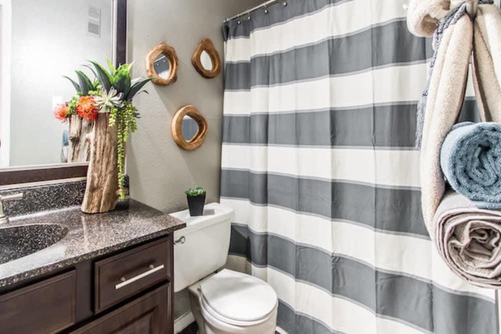 Master bathroom in Houston, Texas at Carmel Creek