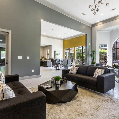 Legacy at Cypress in Cypress, Texas