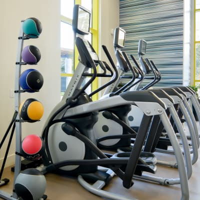 Ellipticals for resident use at Domus on the Boulevard in Mountain View, California