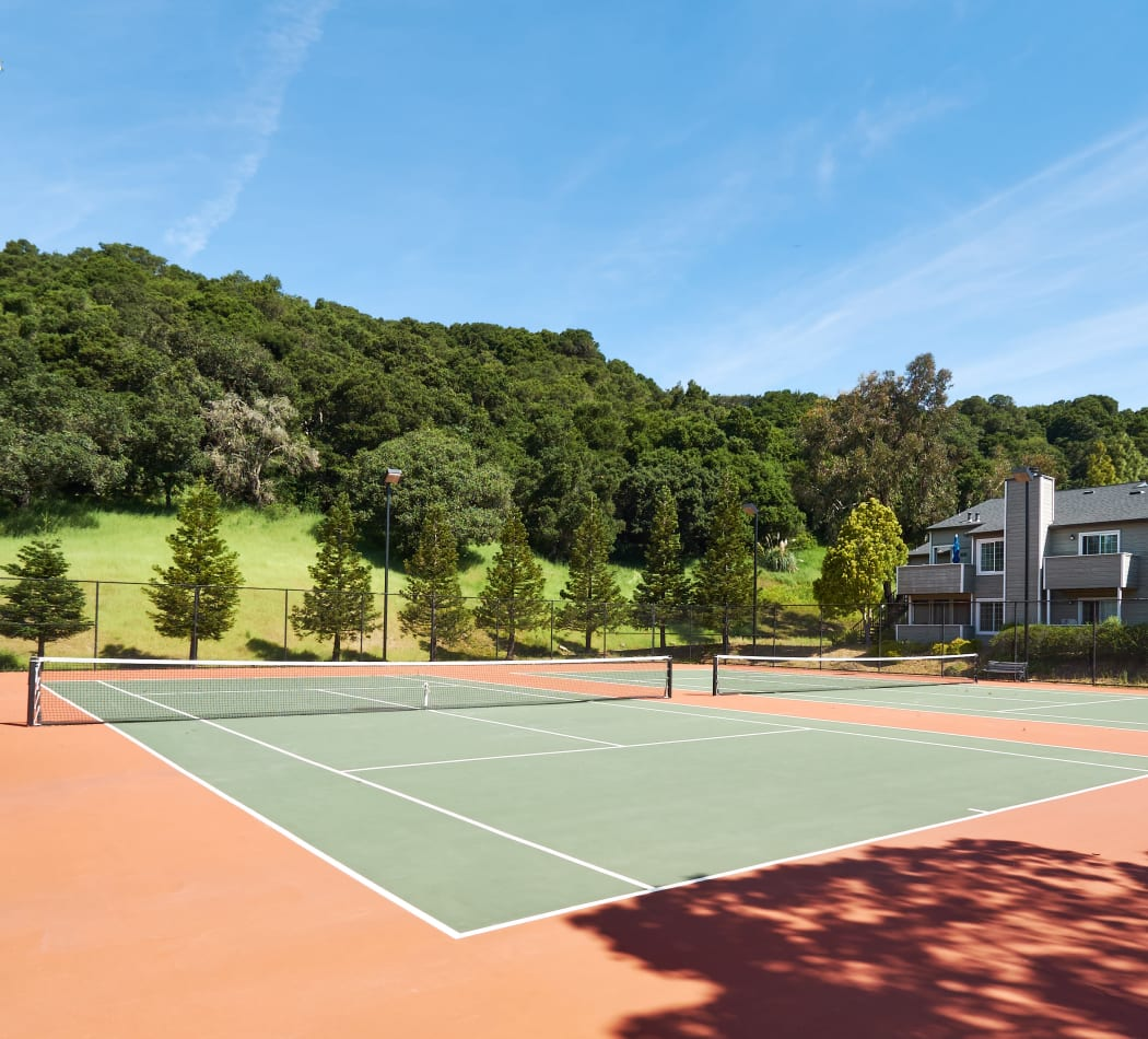 Community Amenities at Shadow Woods in Oakland, California