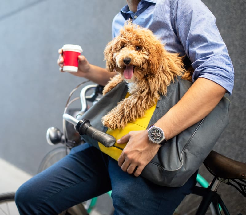 Resident holding his dog while on a bike outside of Sabina in Austin, Texas