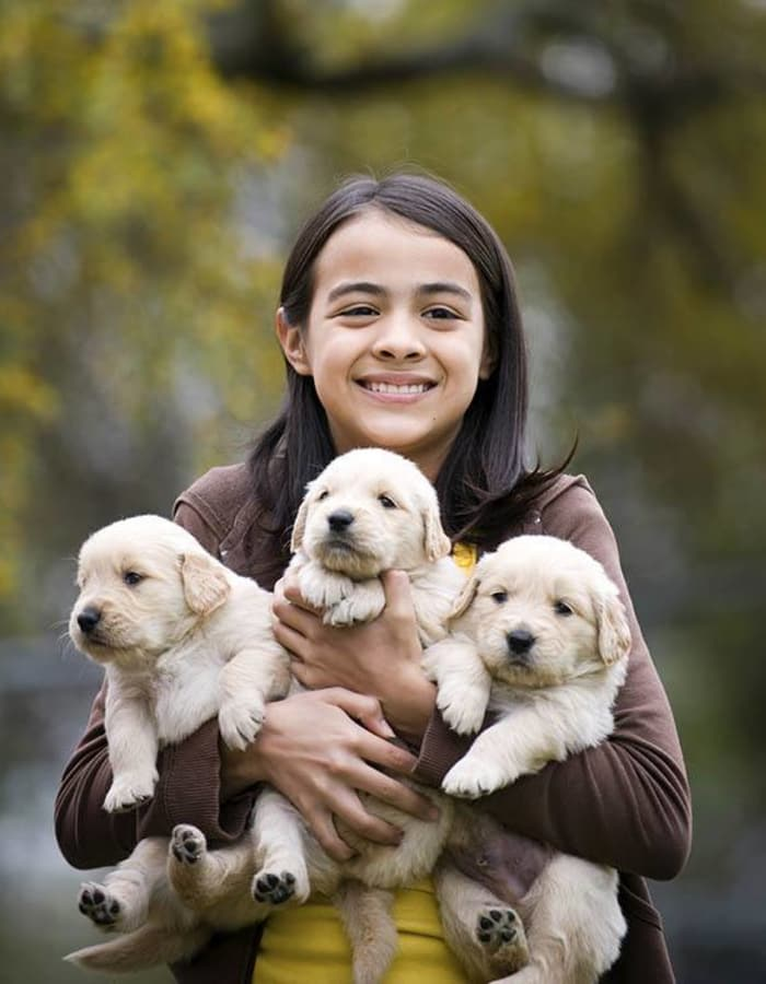 Child with armful of puppies at Arizona Avenue Animal Clinic in Chandler, AZ